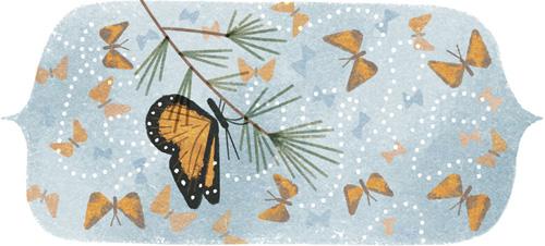 Google Butterflies